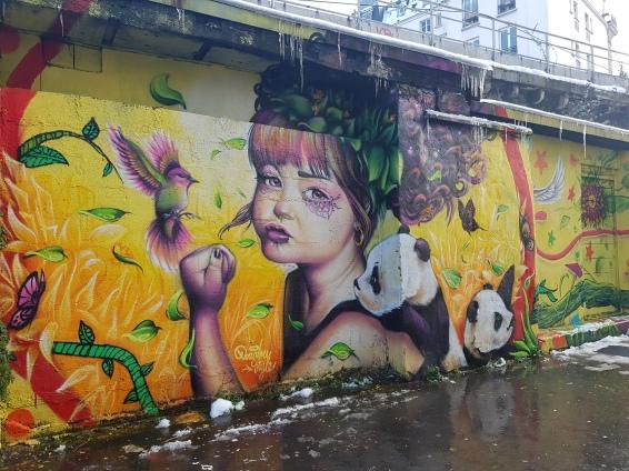 doudoustyle street art paris