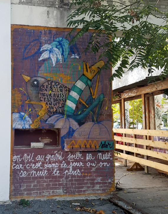 selor street art bordeaux darwin